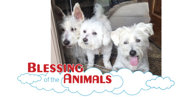 02_Blessing_of_the_Animals