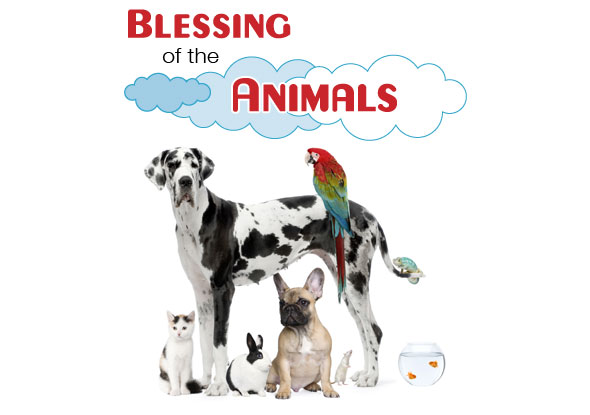 10_Blessing_Animals_Blog