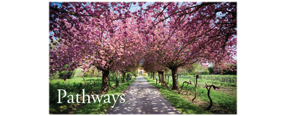 09_Pathways_WS15_WinterSpring_Blog