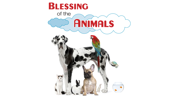 12_Blessing_Animals_2014_Blog